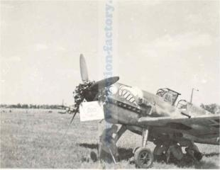Imagine atasata: wespen_bf109_07.jpg