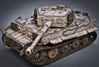 Imagine atasata: Tiger (9)-2.jpg