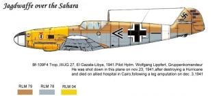 Imagine atasata: Bf_109_F4_trop.yellow_nose.jpg