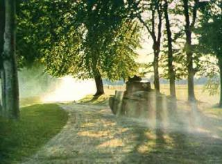 Imagine atasata: panzer_38t_s_under_trees.jpg