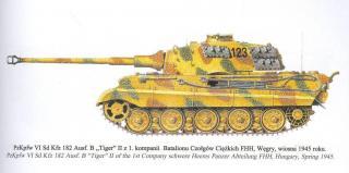 Imagine atasata: tiger2_colors_2.JPG