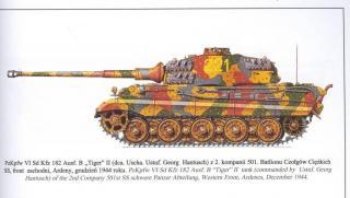 Imagine atasata: tiger2_colors_4.JPG