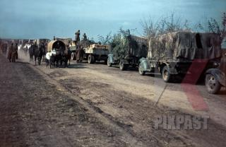 Imagine atasata: zzzzzzzzzzzzzzzzzzzz stock-photo-german-army-supply-trucks-retreat-beside-romanian-infantry-unit-russian-front-1944-13103.jpg