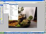 Posibilitati de  editare si redimensionare fotografiilor in vederea postarii